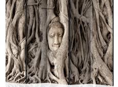 Paraván - Buddha's Tree II [Room Dividers]
